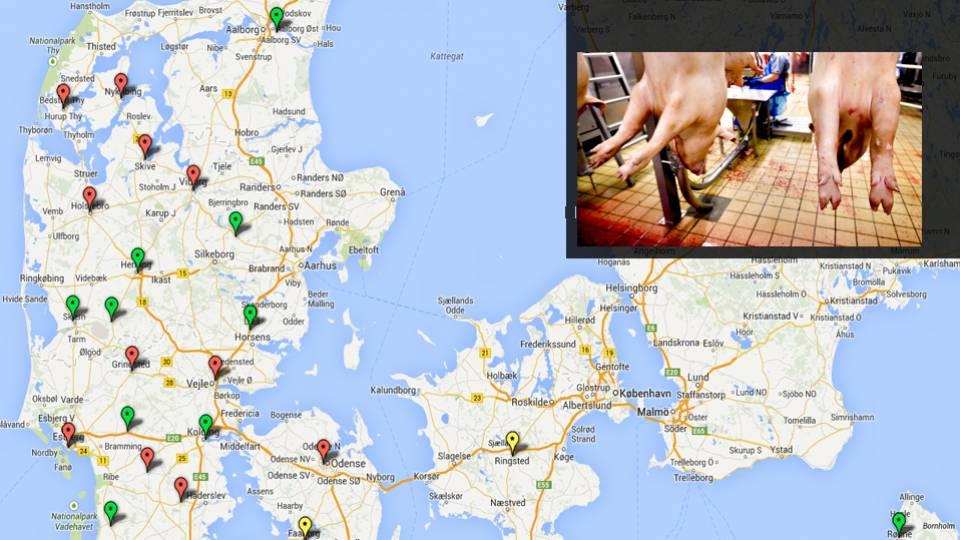 Se kortet: Så mange slagterier er lukket de sidste 10 år - TV 2