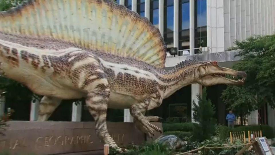vand dinosaur