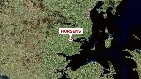 søborg taxa biografer i Horsens