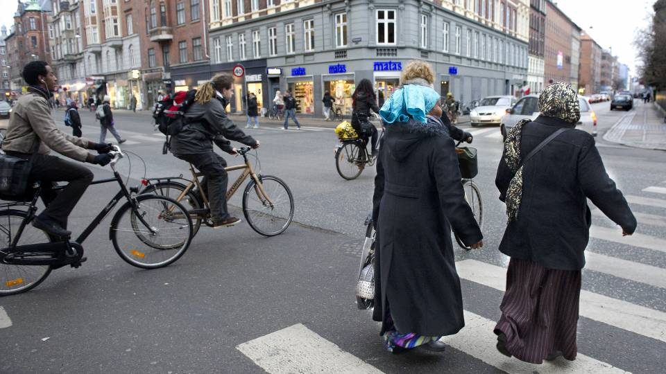 indvandring i danmark