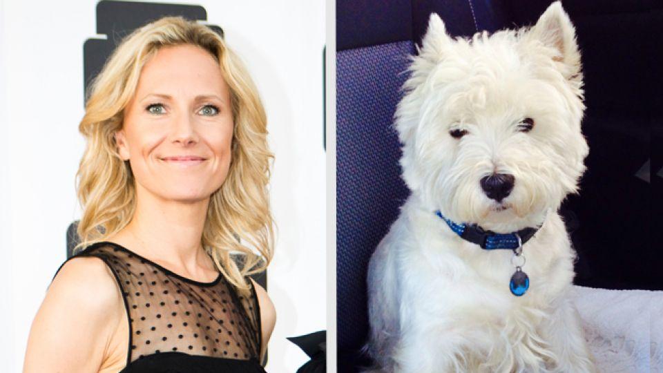 Tv-vært fik stjålet sin hund - og har nu fået den retur - TV 2