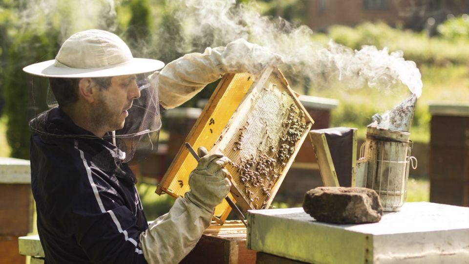 er honning sundt