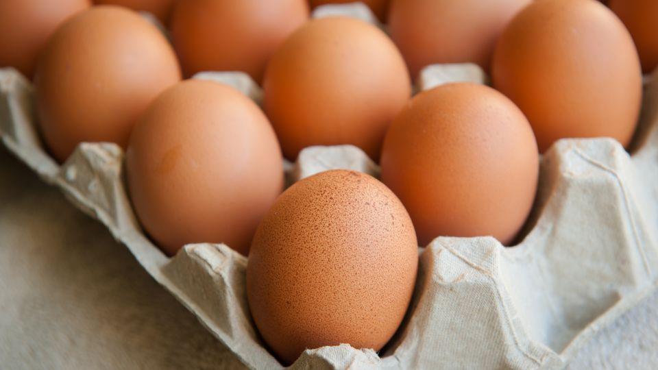skal æg på køl
