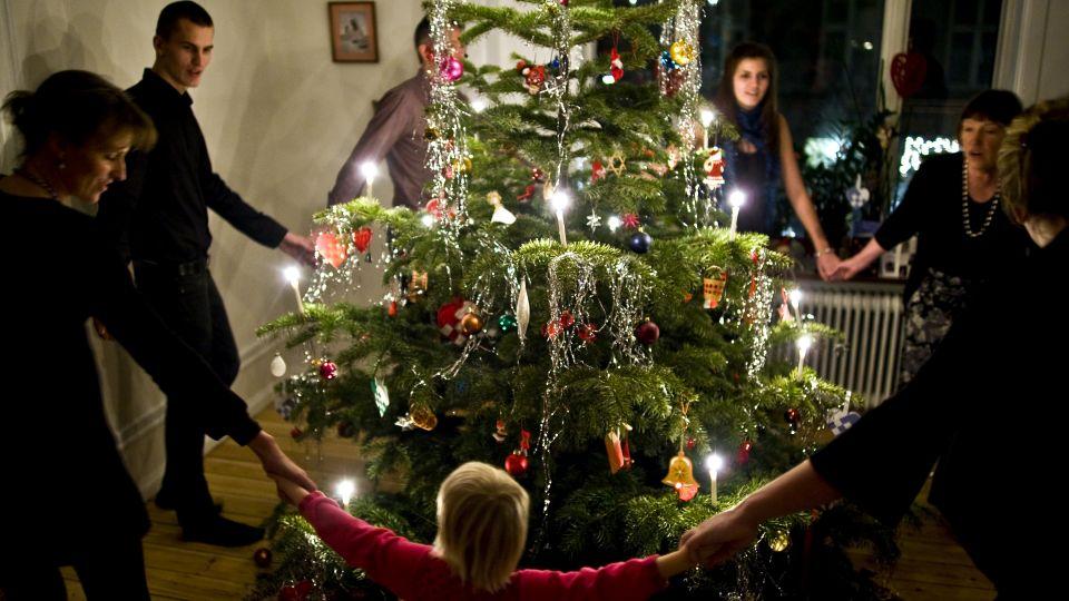 Sådan holder dit træ helt til juleaften - TV 2